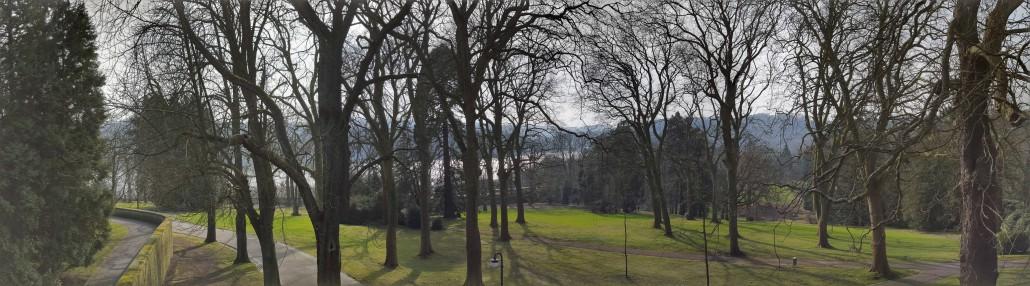 Essen Unternehmensberatung Blick auf den Baldeneysee von der Villa Hügel