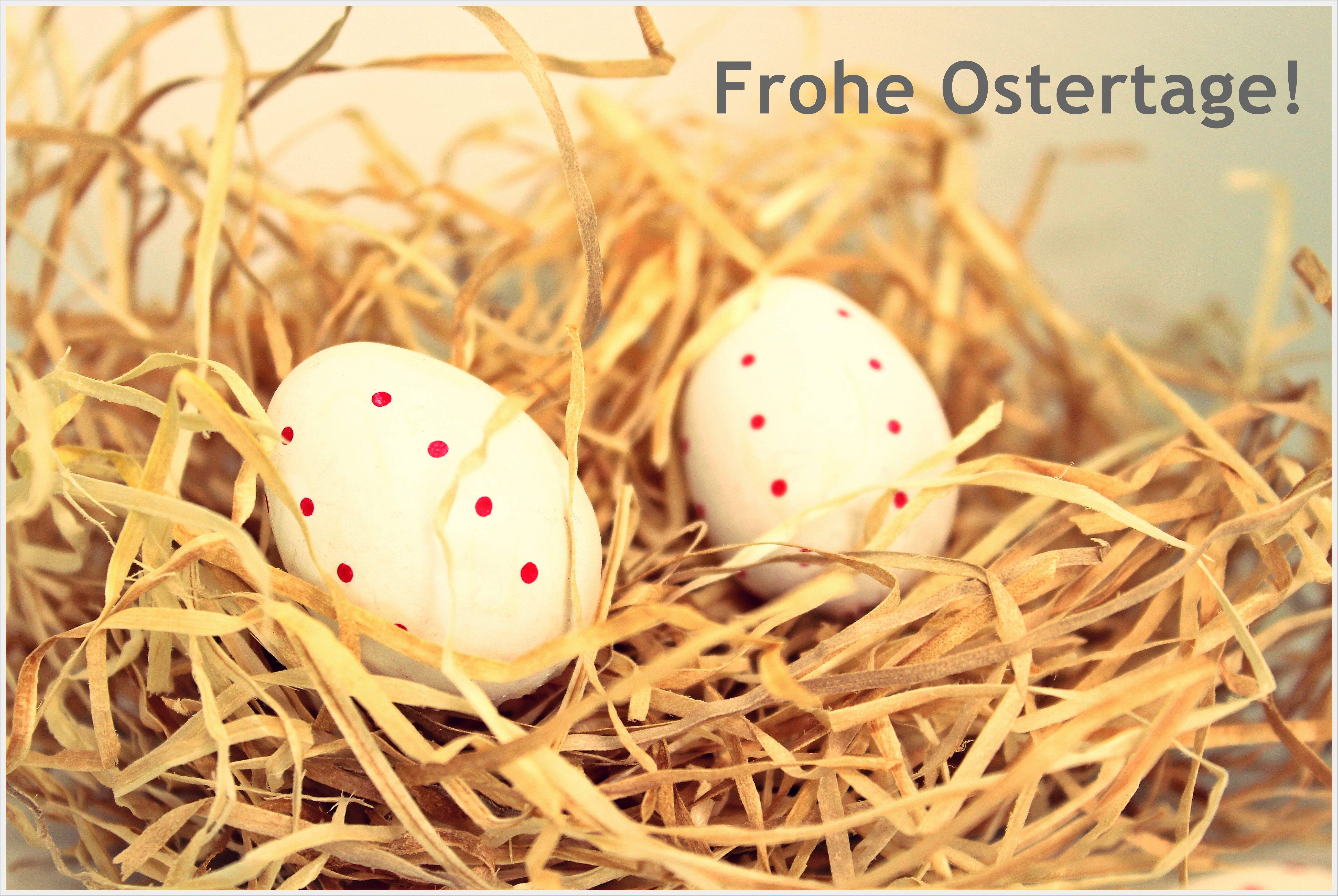 Frohe Ostertage wünscht Ihre Unternehmensberatung Essen